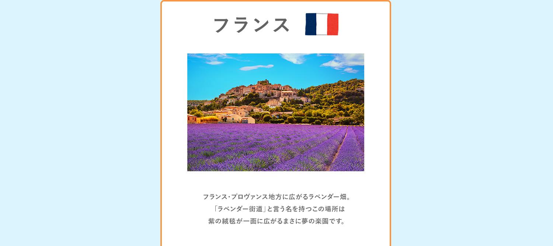 fragrance_map_05