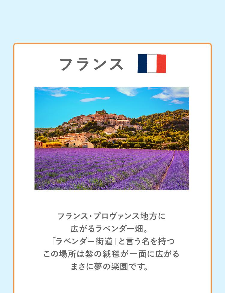 fragrance_map_sp_05